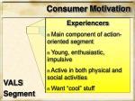 consumer motivation1