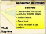 consumer motivation2