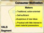 consumer motivation4