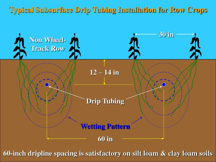 Typical Subsurface Drip Tubing Installation for Row Crops