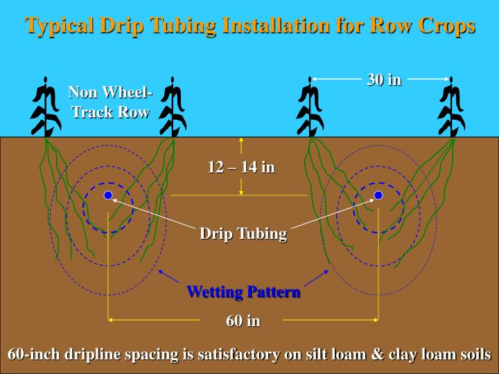 Typical Drip Tubing Installation for Row Crops