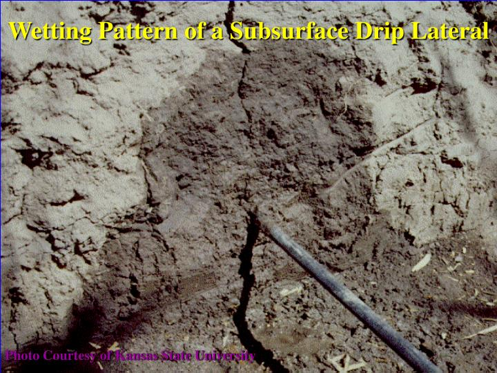 Wetting Pattern of a Subsurface Drip Lateral