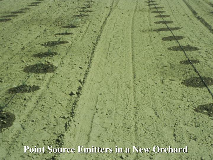 Point Source Emitters in a New Orchard