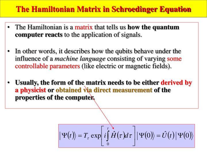 The Hamiltonian Matrix in Schroedinger Equation