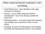 other external factors involved in skin wrinkling