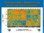 correlation matrix between drug activity and gene expression