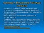 gasteiger s biochemical pathways database