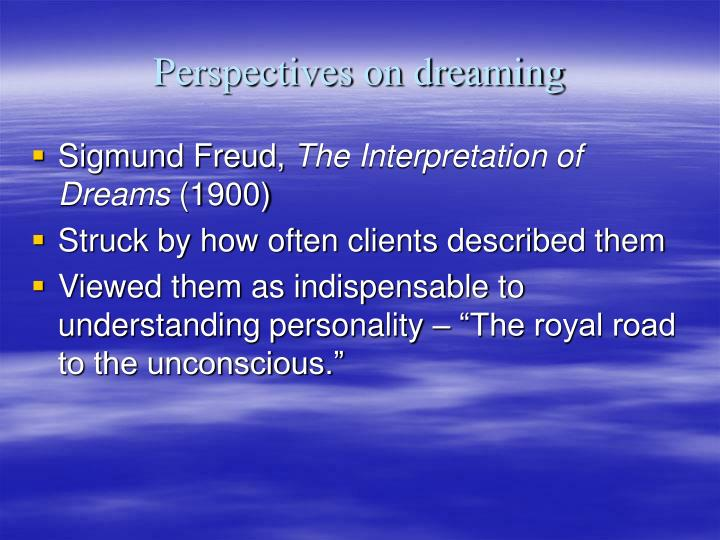 Perspectives on dreaming