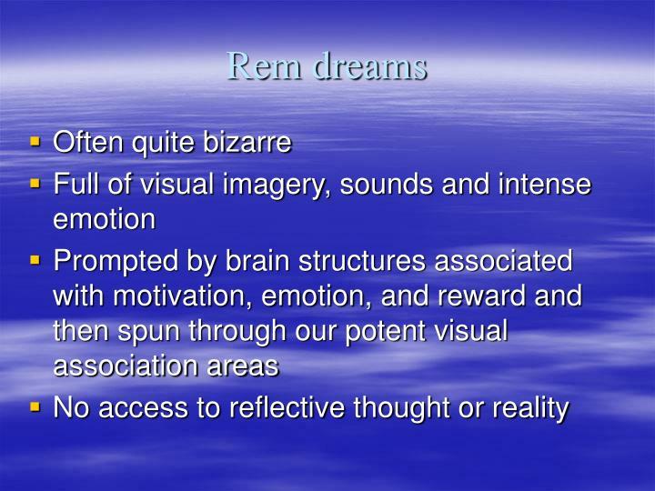 Rem dreams