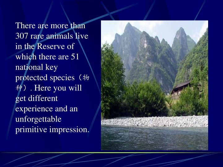 There are more than 307 rare animals live in the Reserve of which there are 51 national key protected species