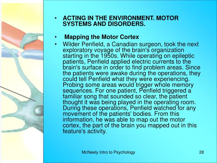 ACTING IN THE ENVIRONMENT. MOTOR SYSTEMS AND DISORDERS.