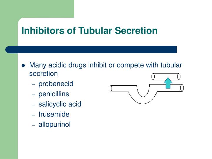 Inhibitors of Tubular Secretion