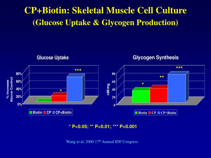 CP+Biotin: Skeletal Muscle Cell Culture