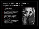 industrial workers of the world big bill haywood et al