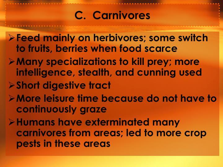 C.  Carnivores