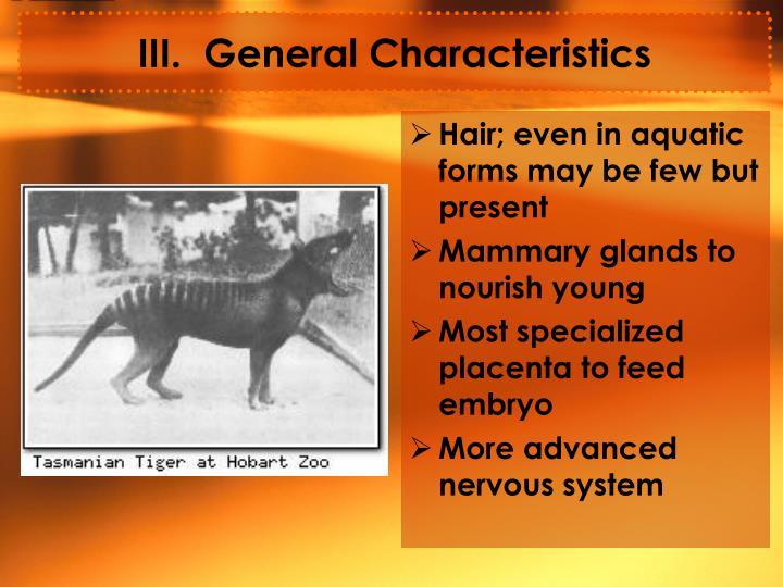 III.  General Characteristics