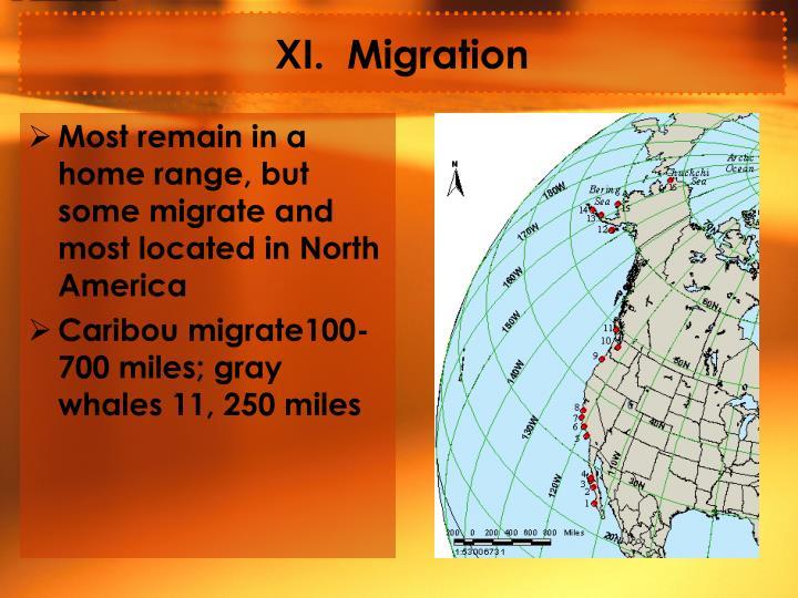XI.  Migration