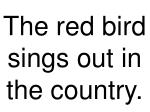 the red bird sings out in the country
