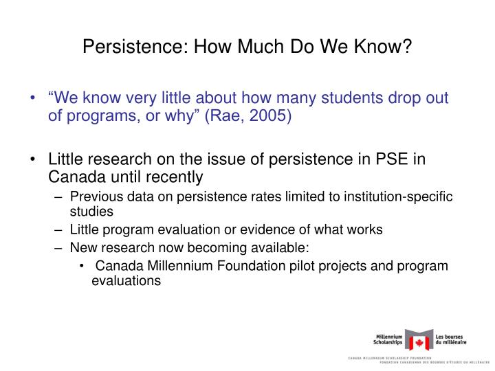 Persistence: How Much Do We Know?