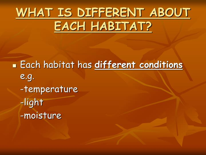 WHAT IS DIFFERENT ABOUT EACH HABITAT?