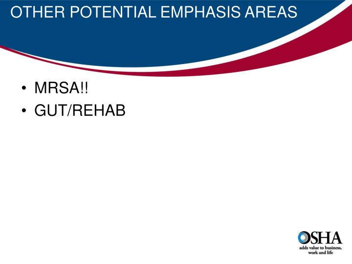 OTHER POTENTIAL EMPHASIS AREAS