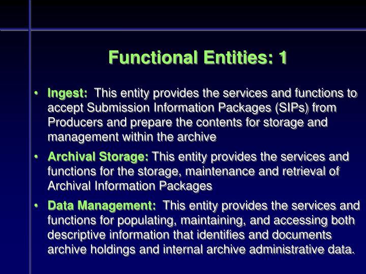 Functional Entities: 1
