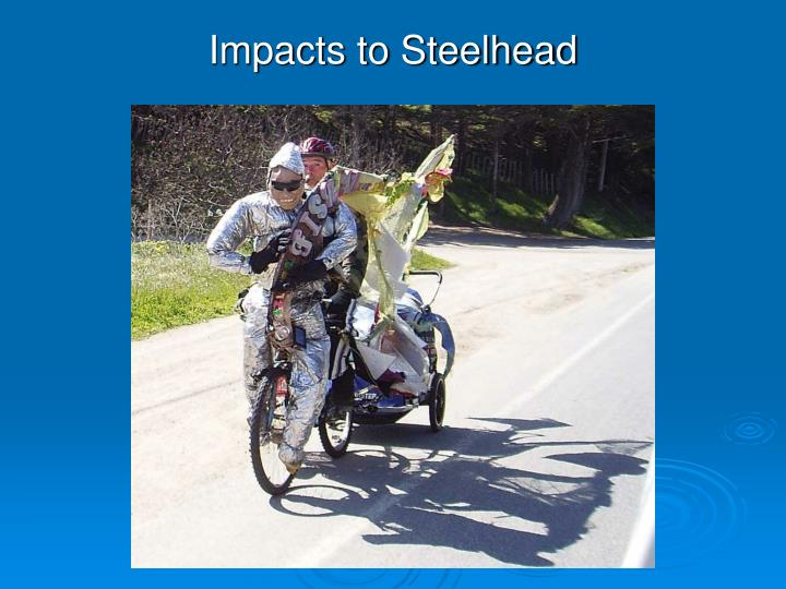 Impacts to Steelhead