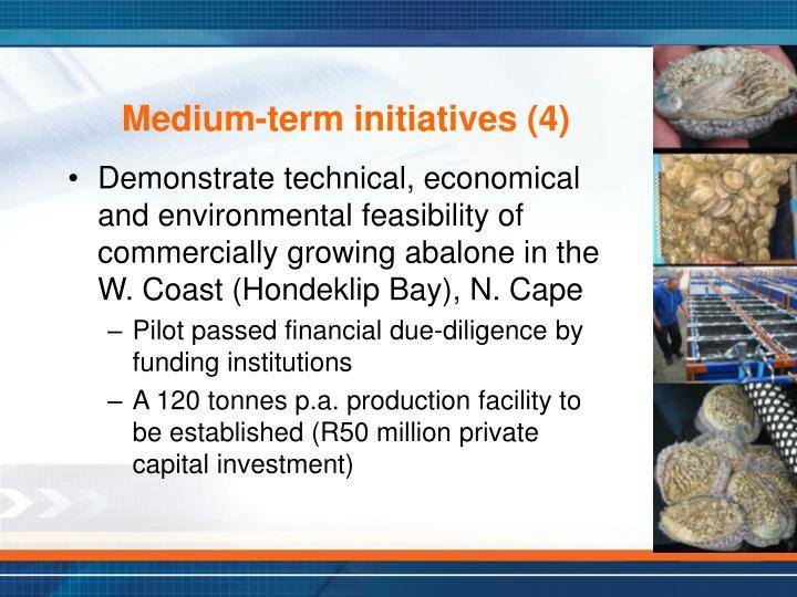 Medium-term initiatives (4)