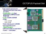 octopus payload slot