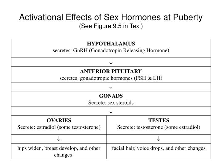 Activational Effects of Sex Hormones at Puberty