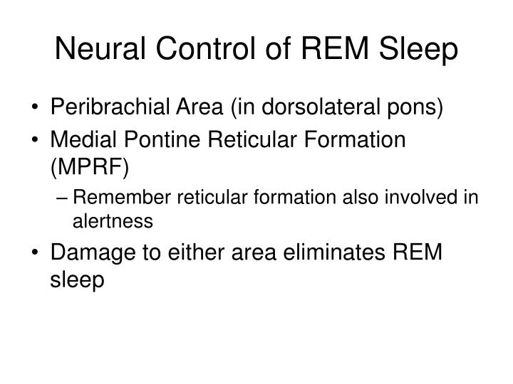 Neural Control of REM Sleep