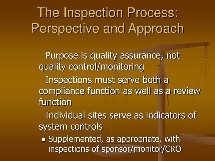 The Inspection Process: Perspective and Approach