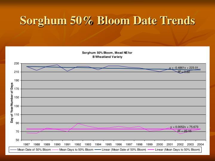 Sorghum 50% Bloom Date Trends