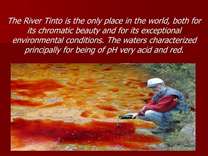 The River Tinto is the only place in the world, both for its chromatic beauty and for its exceptional environmental conditions. The waters characterized principally for being of pH very acid and red.