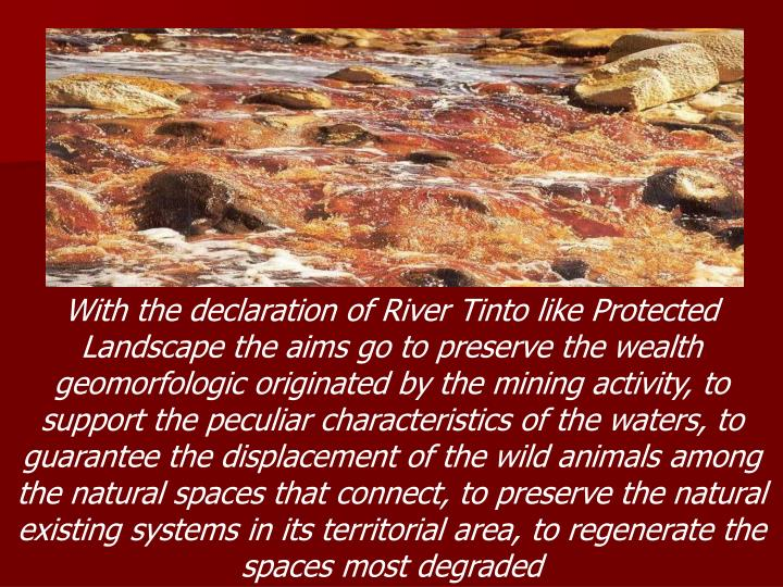 With the declaration of River Tinto like Protected Landscape the aims go to preserve the wealth geomorfologic originated by the mining activity, to support the peculiar characteristics of the waters, to guarantee the displacement of the wild animals among the natural spaces that connect, to preserve the natural existing systems in its territorial area, to regenerate the spaces most degraded