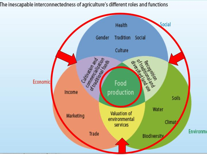 Agriculture's critical challenges: Multifunctionality