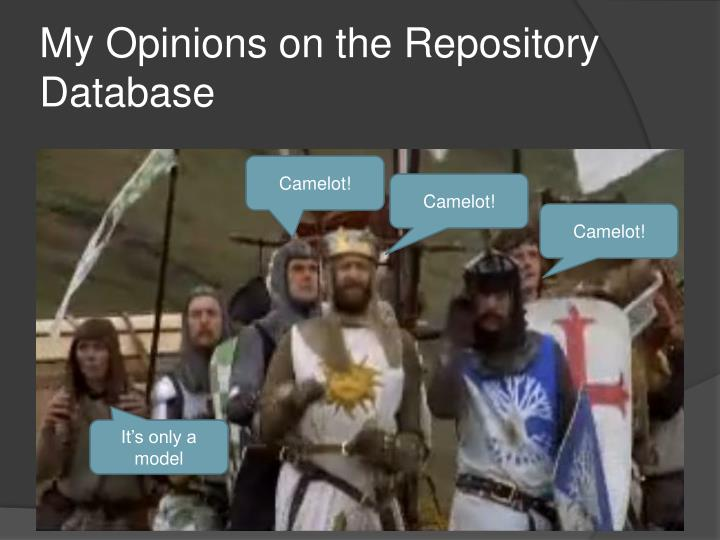 My Opinions on the Repository Database