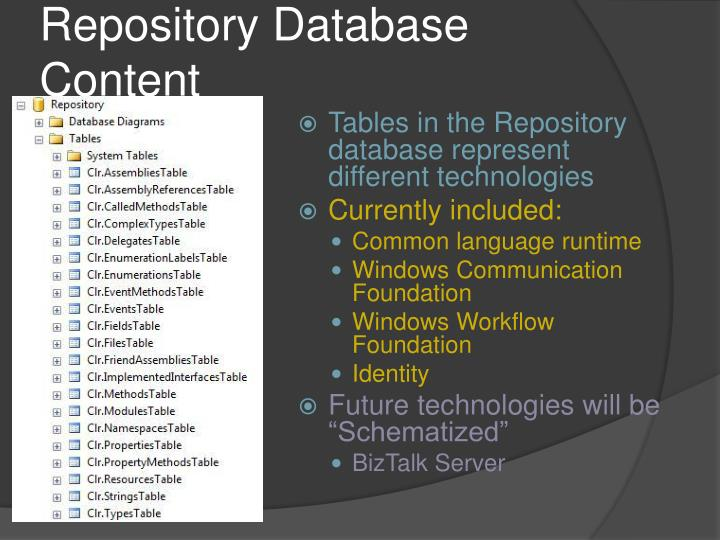 Repository Database Content