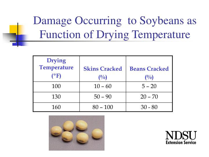 Damage Occurring  to Soybeans as Function of Drying Temperature