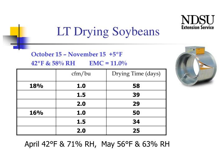 LT Drying Soybeans