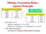 mining association rules apriori principle