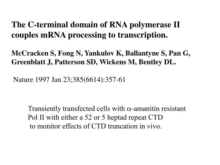 The C-terminal domain of RNA polymerase II couples mRNA processing to transcription.