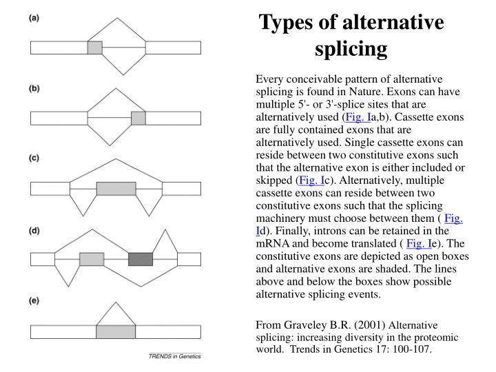 Types of alternative splicing