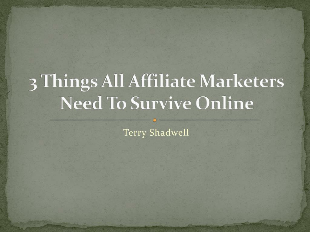 3 things all affiliate marketers need to survive online l.
