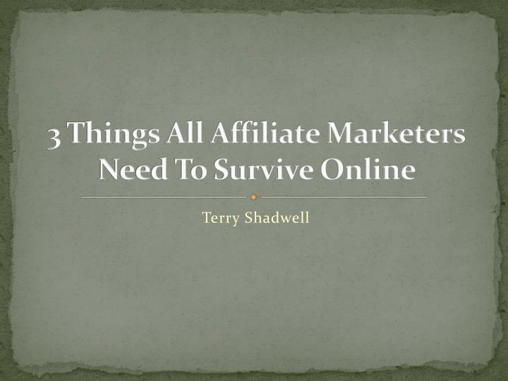 3 things all affiliate marketers need to survive online
