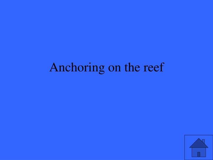 Anchoring on the reef