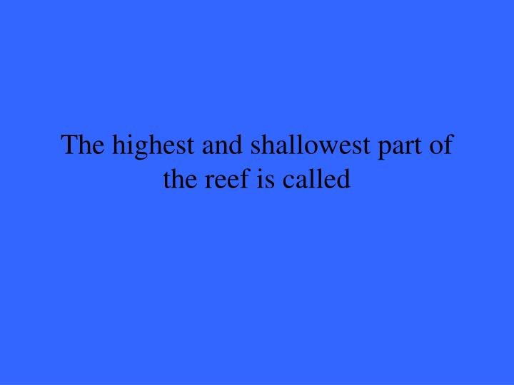 The highest and shallowest part of the reef is called