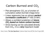 carbon burned and co 2