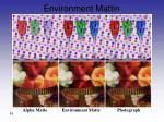 environment mattin