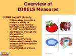 overview of dibels measures1